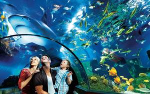 Ночь в океанографическом музее Монако